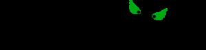 logo_fm21